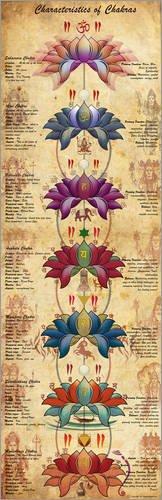 Cuadro de Madera 20 x 60 cm: Characterstics of Chakras Yoga Poster de Sharma Satyakam